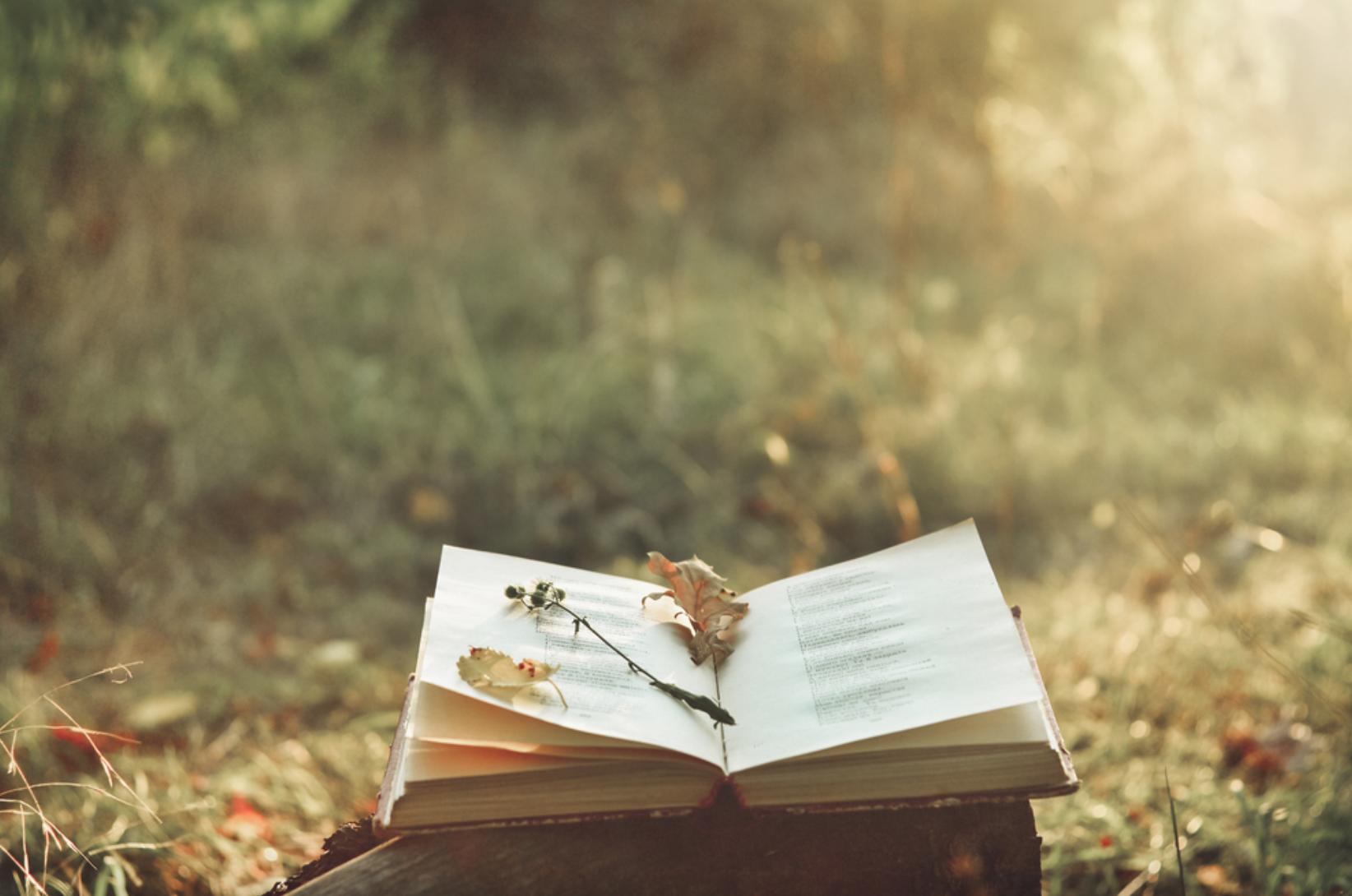 Entrepreneur & Poet Michael Andrew Lauchlan Reveals His 5 Favorite Poetry Books Of All-Time